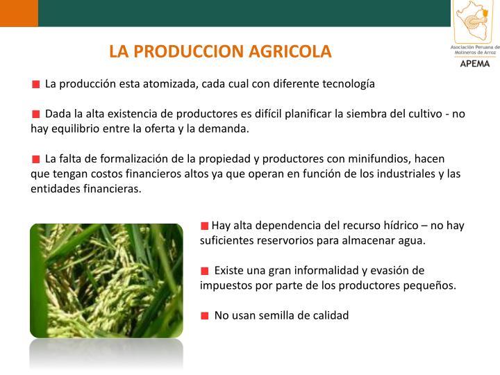 LA PRODUCCION AGRICOLA