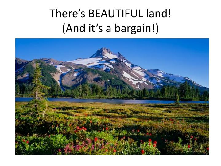 There's BEAUTIFUL land!