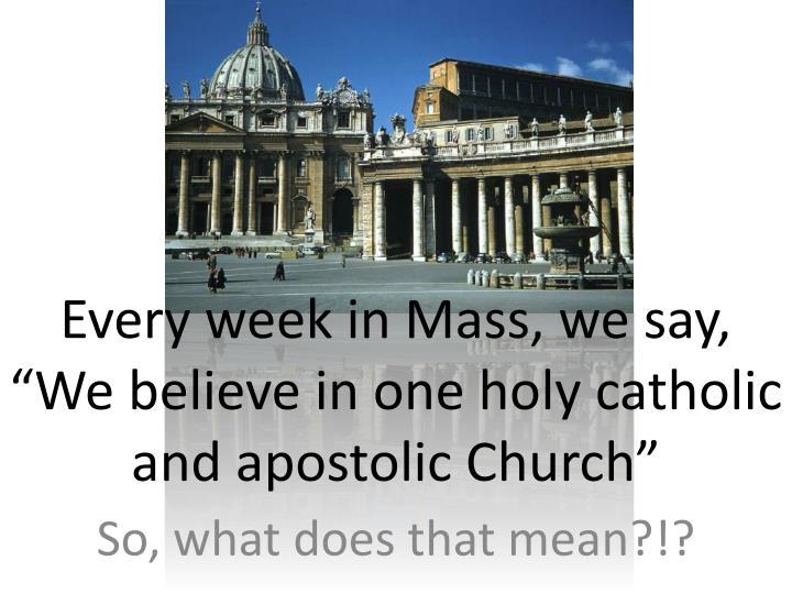 every week in mass we say we believe in one holy catholic and apostolic church n.