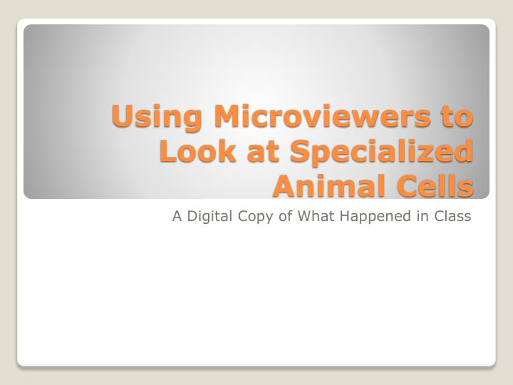 Using microviewers to look at specialized animal cells