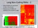 long non coding rnas 2