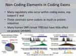 non coding elements in coding exons