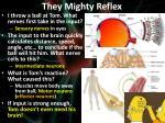 they mighty reflex