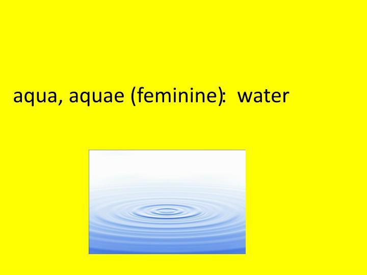 Aqua,