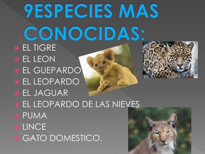 9especies mas conocidas