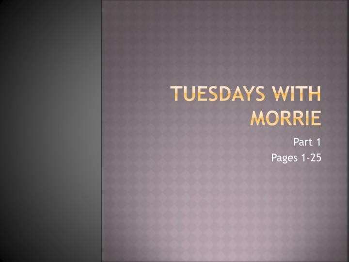 tuesdays with morrie a religious perspective essay Essays tagged: morrie schwartz for mitch albom, that person was morrie schwartz  tuesdays with morrie - a religious perspective.