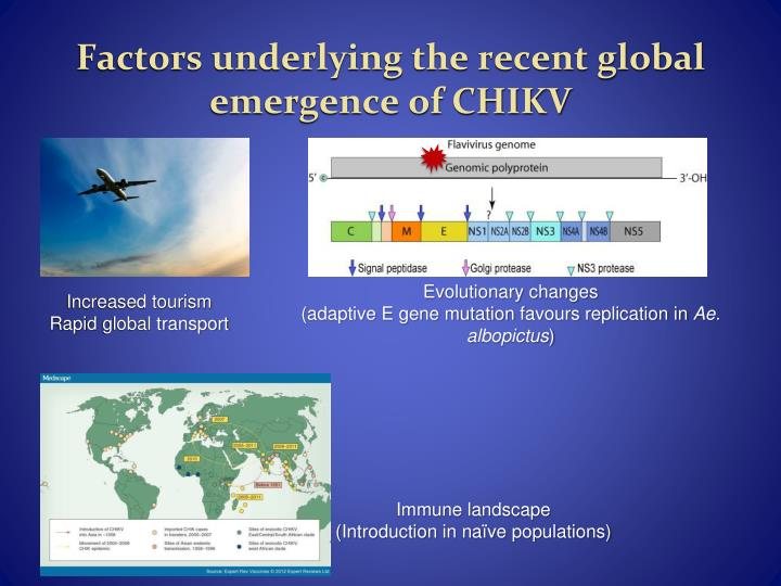 Factors underlying the recent global emergence of CHIKV