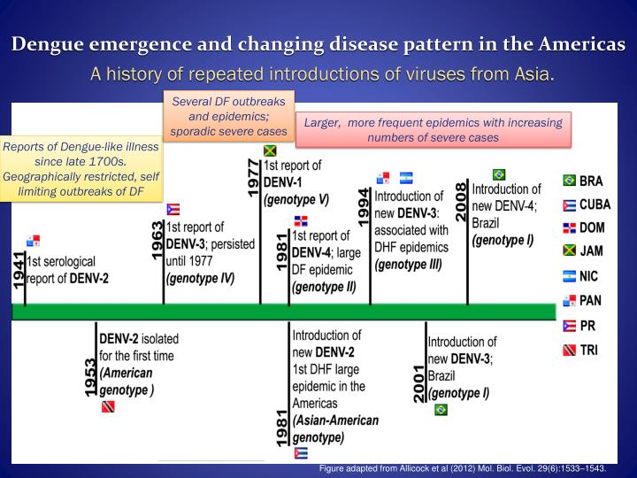 Dengue emergence and changing disease pattern in the Americas