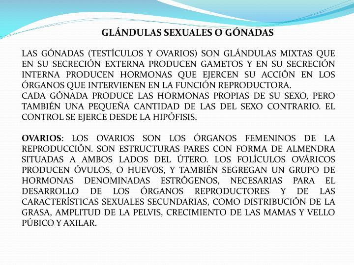 GLÁNDULAS SEXUALES O GÓNADAS