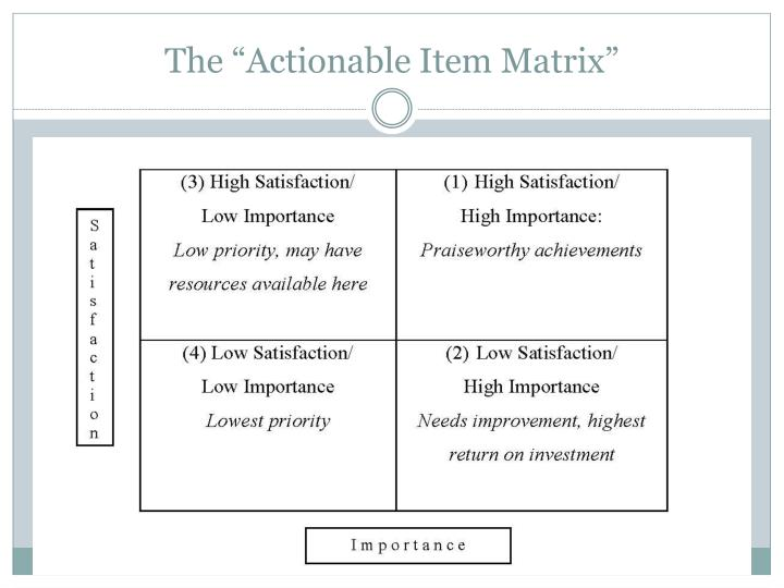 "The ""Actionable Item Matrix"""