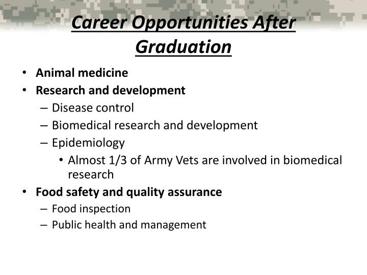 Career Opportunities After Graduation