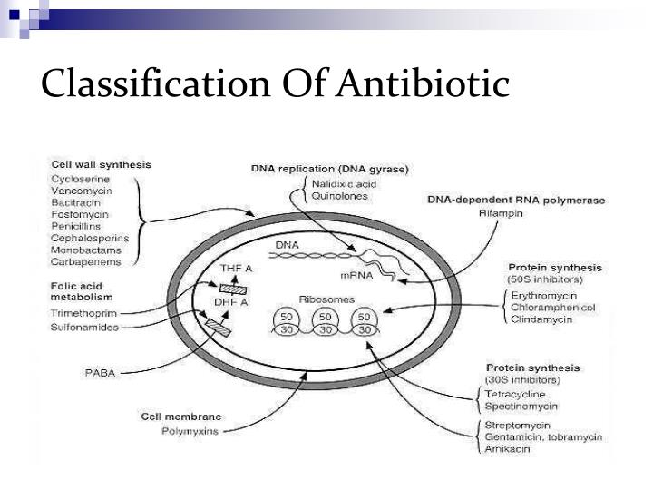 Classification Of Antibiotic