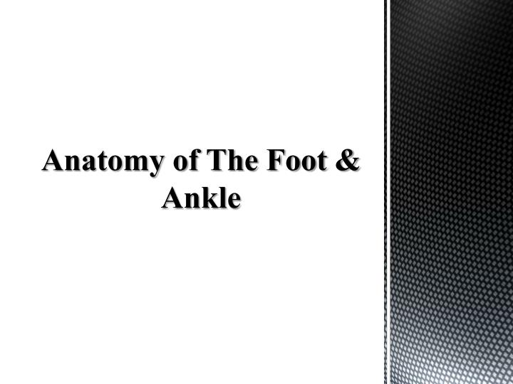 Ppt Anatomy Of The Foot Ankle Powerpoint Presentation Id2361555