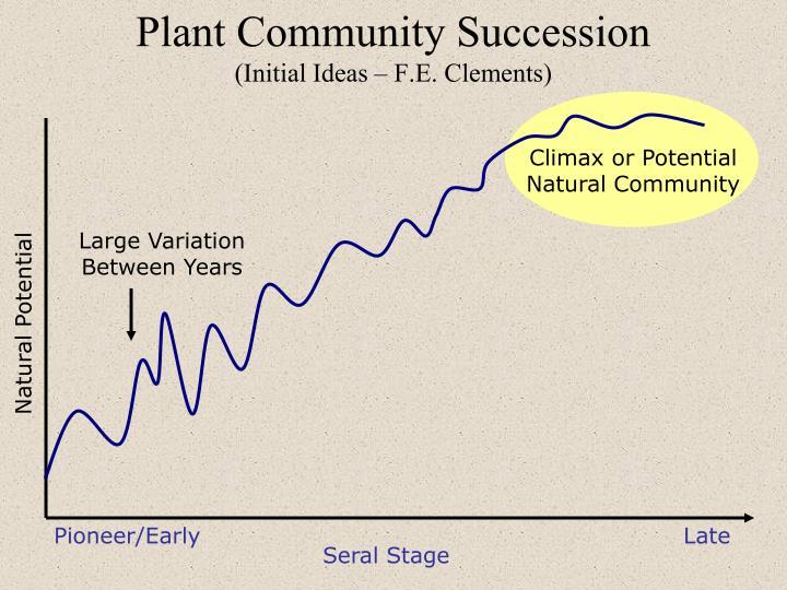 Plant community succession initial ideas f e clements