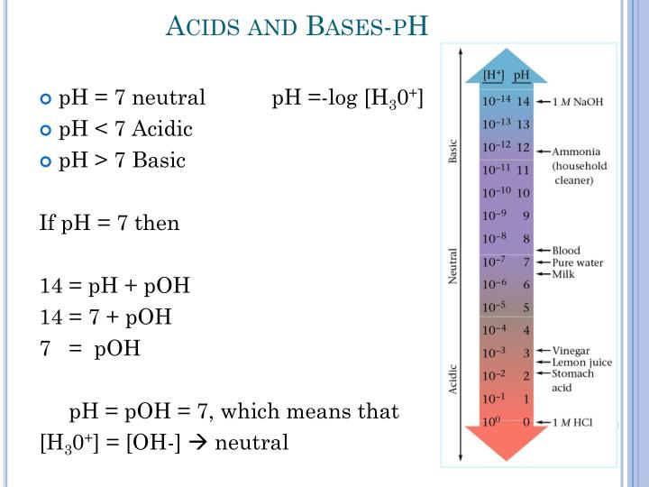 Acids and Bases-pH
