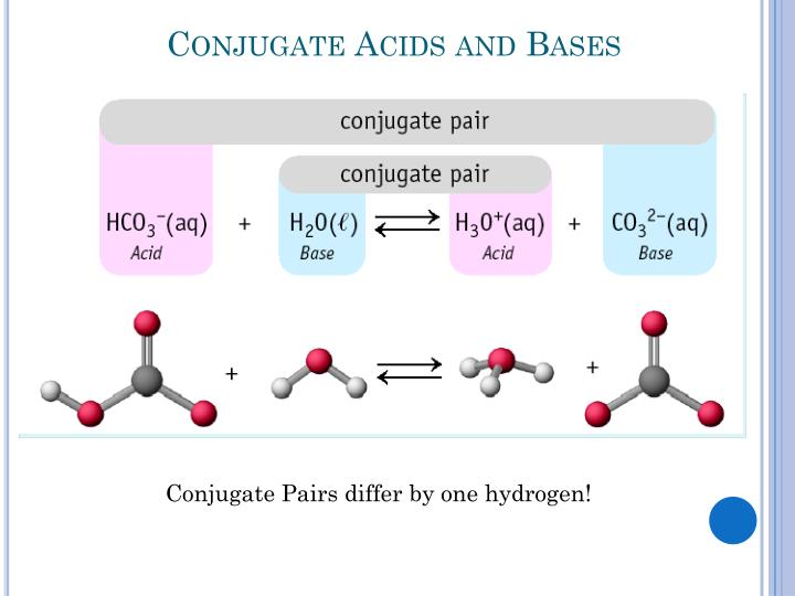 Conjugate Acids and Bases