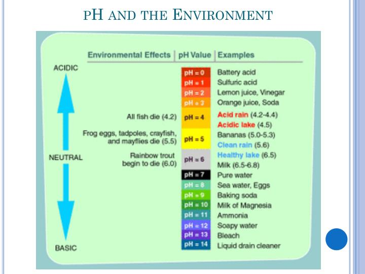 pH and the Environment