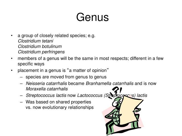 Genus