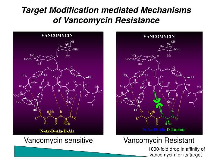 Target Modification mediated Mechanisms