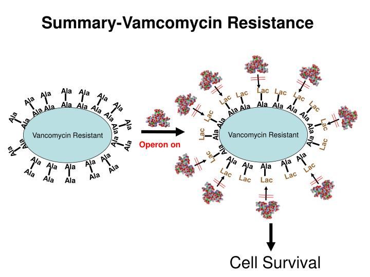 Vancomycin Resistant