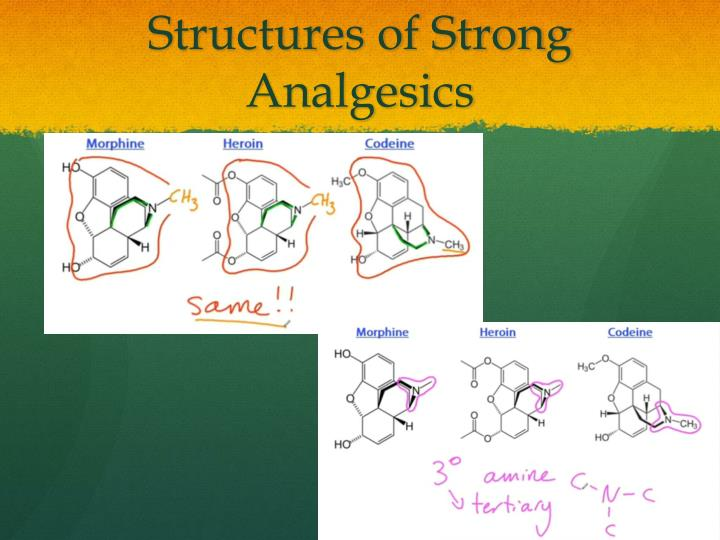 Structures of Strong Analgesics