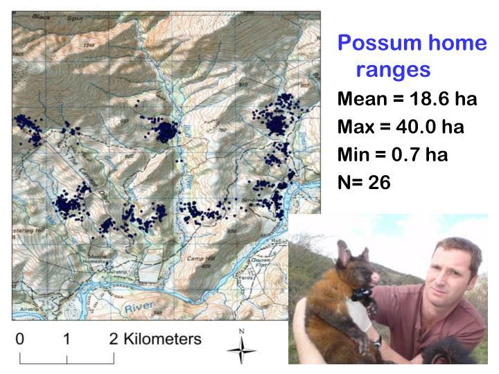 Possum home ranges
