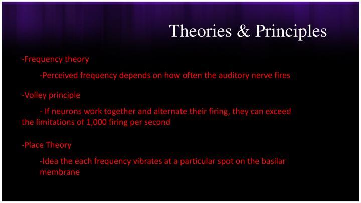 Theories & Principles