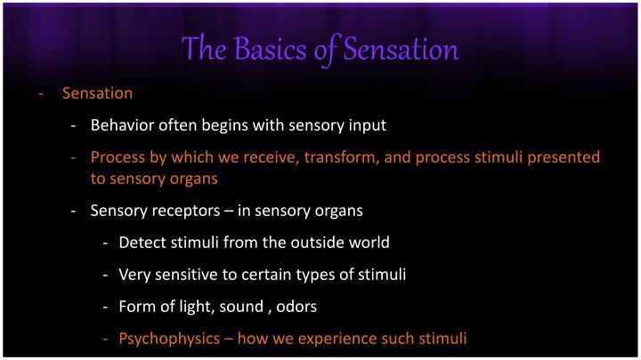 The basics of sensation