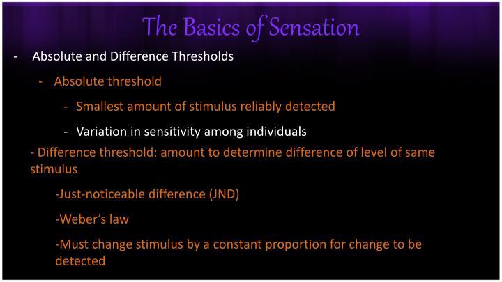 The basics of sensation1