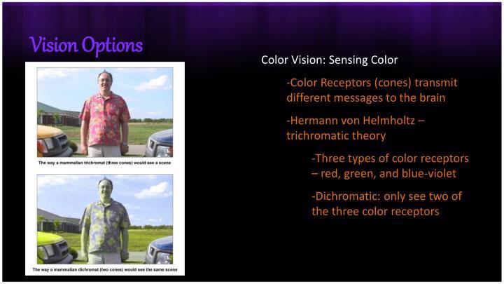 Vision Options