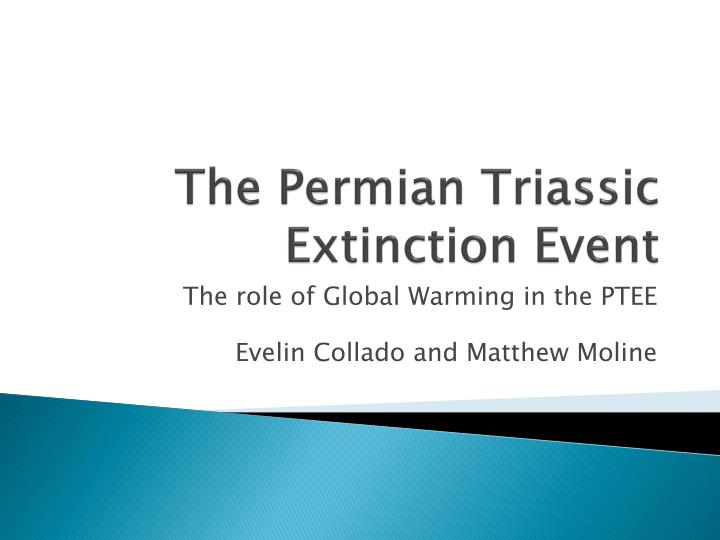 the permian triassic extinction event n.