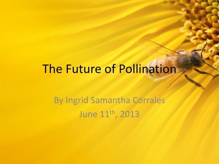 the future of pollination n.