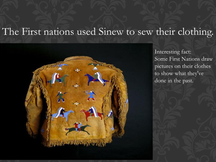 The First nations used Sinew to sew their clothing.