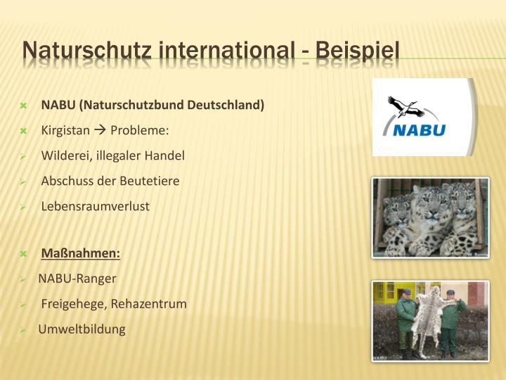 Naturschutz international - Beispiel