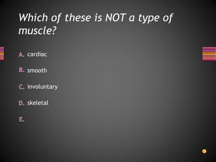 Which of these is NOT a type of muscle?