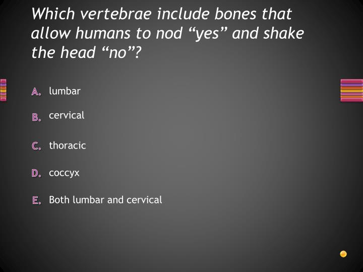 """Which vertebrae include bones that allow humans to nod """"yes"""" and shake the head """"no""""?"""