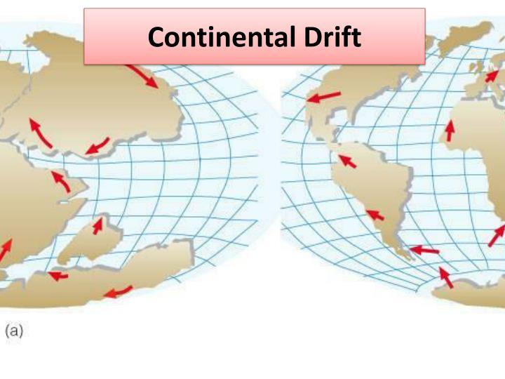 continetal drift theory essay The continental drift theory, free study guides and book notes including comprehensive chapter analysis, complete summary analysis, author biography information, character profiles, theme analysis, metaphor analysis, and top ten quotes on classic literature.