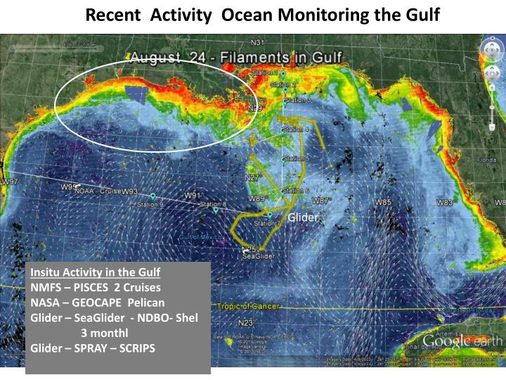 Recent  Activity  Ocean Monitoring the Gulf