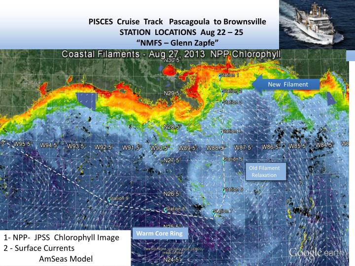 PISCES  Cruise  Track   Pascagoula  to Brownsville