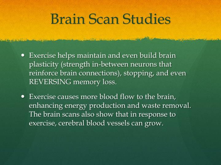 Brain Scan Studies