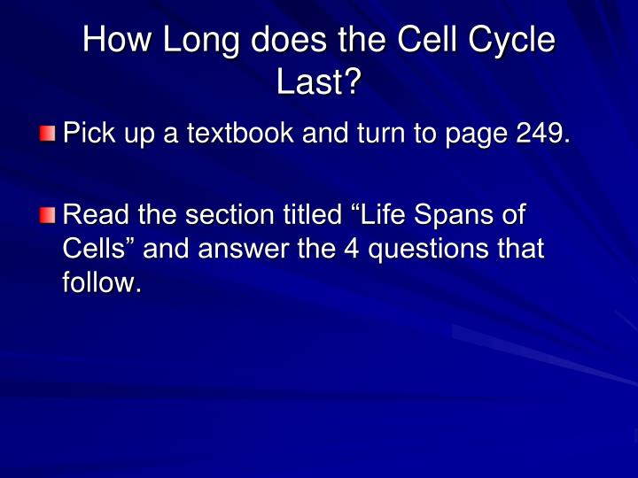 How Long does the Cell Cycle Last?