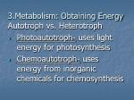 3 metabolism obtaining energy
