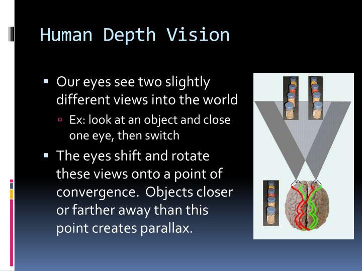 Human depth vision