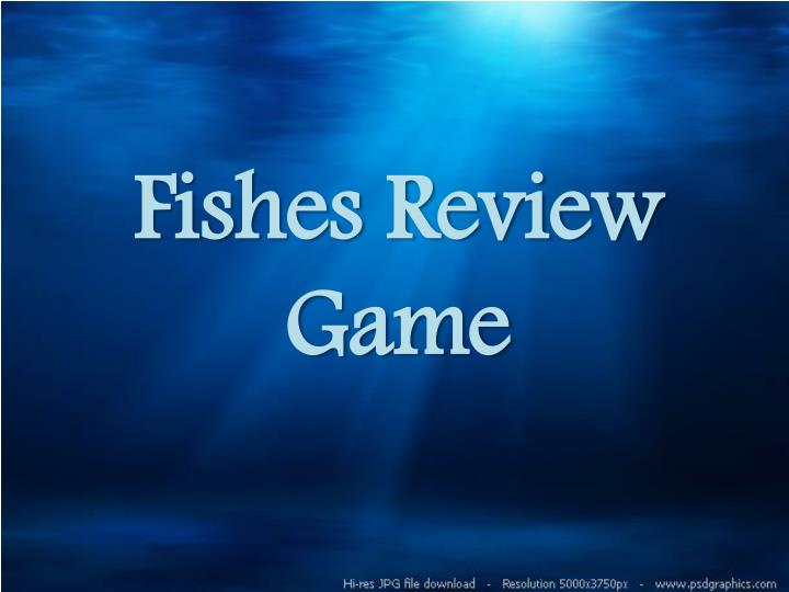 fishes review game n.
