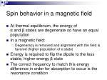 spin behavior in a magnetic field1