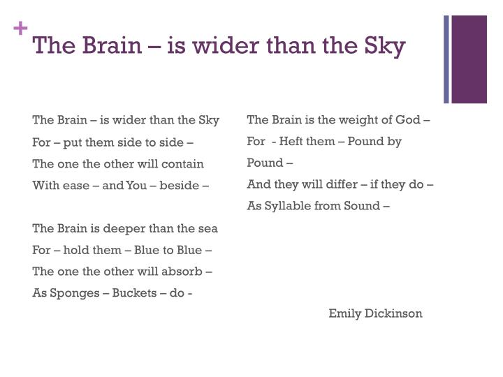 the brain is wider than the sky n.
