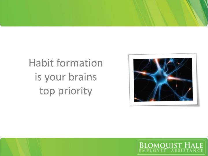 Habit formation is your brains top priority