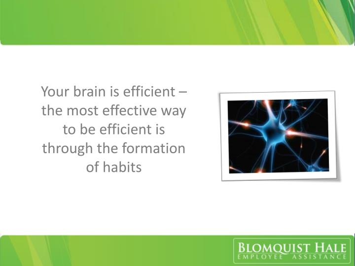 Your brain is efficient – the most effective way to be efficient is through the formation of