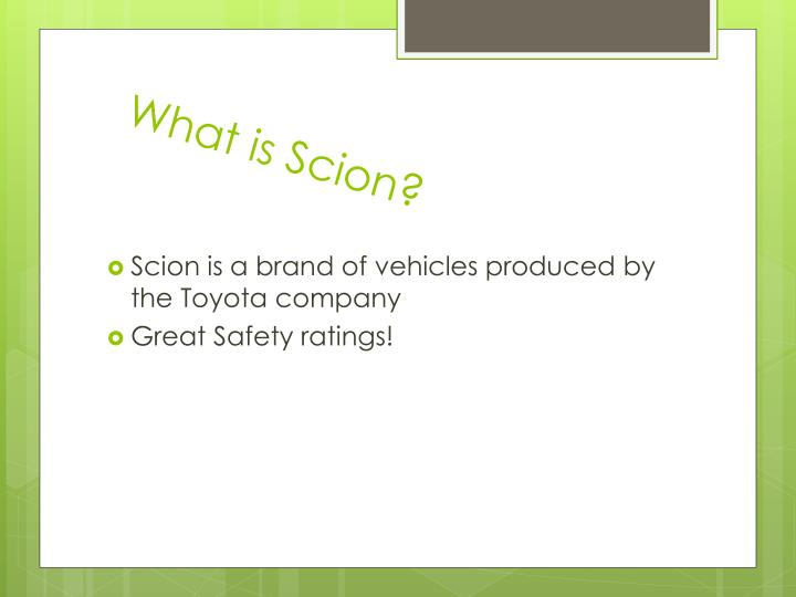 What is scion