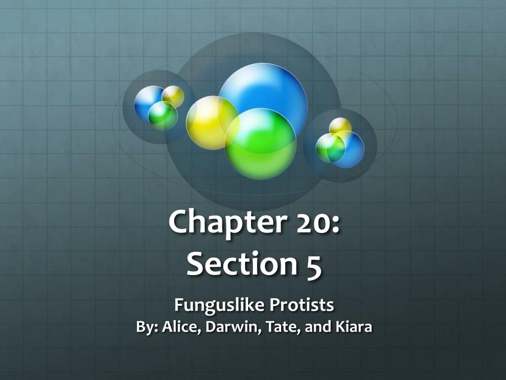 Mitosis and asexual reproduction chapter 20 answers